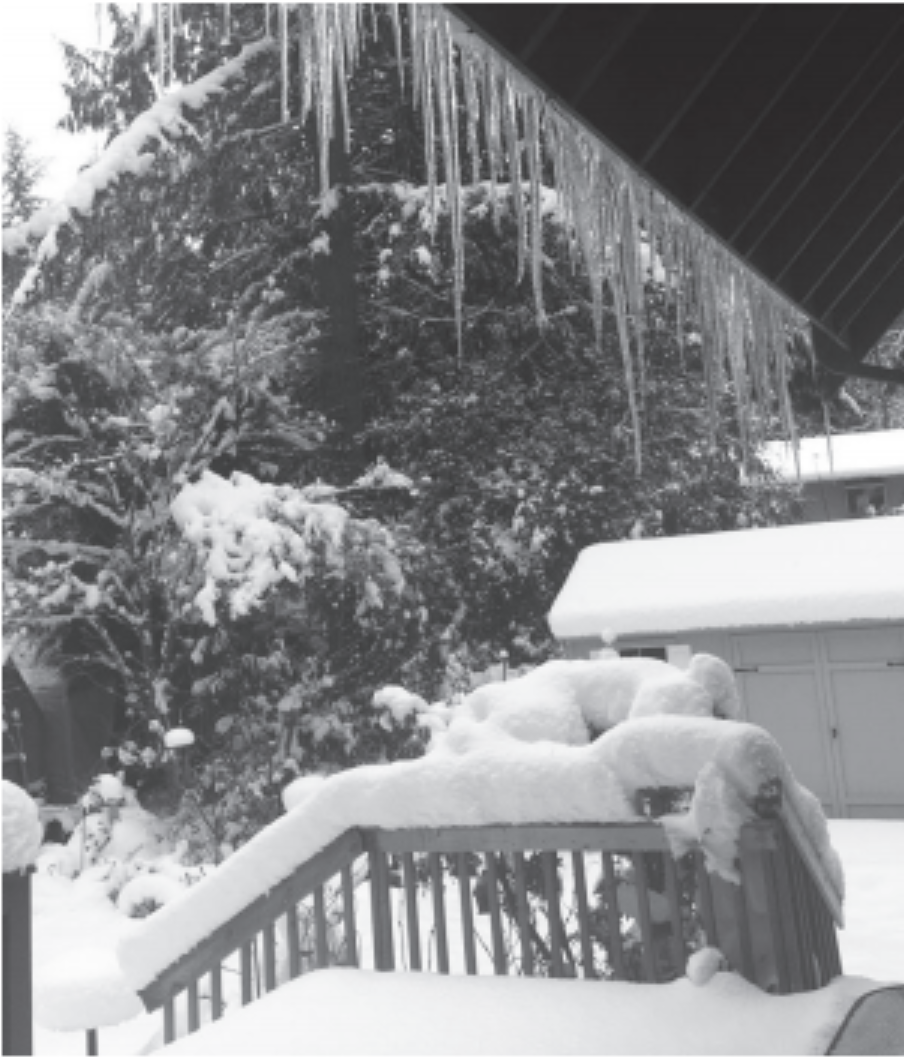 Snow+and+icicles+at+a+house+in+Bothell.