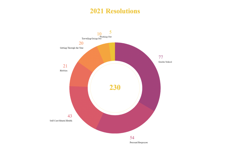 A pie chart showing the distributions of different types of resolutions based on a Catamount survey.