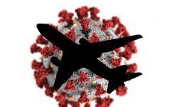 Virus photo from the CDC, layered image by Kaya Suraci