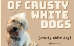 In Defense of Crusty White Dogs